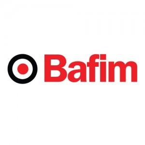 bafim-logo-300x300
